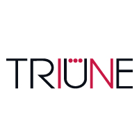Triune Strategy Consulting